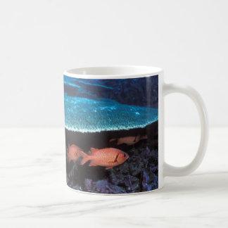 兵士の魚が付いている美しいマグおよび珊瑚は設計します コーヒーマグカップ