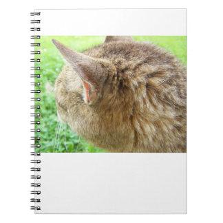 内気なカメラ ノートブック