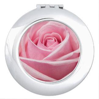 円形の密集した鏡のピンクのバラ