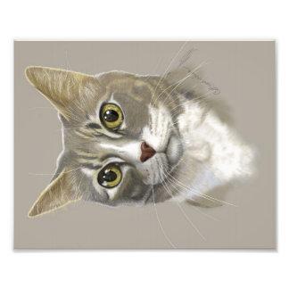 写真のプリント8x10のデジタル芸術猫の肖像画 フォトプリント