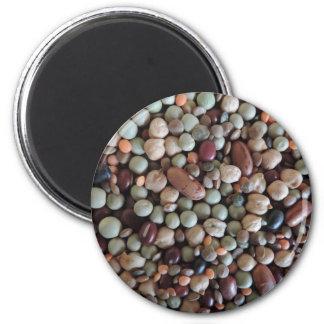 写真、カラフルな混合された豆を播きます マグネット