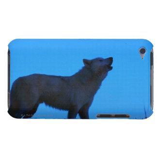 写真、夜、色に遠ぼえしている白いオオカミ高く Case-Mate iPod TOUCH ケース