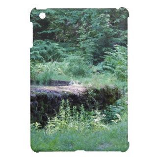 写真#7 iPad MINIケース