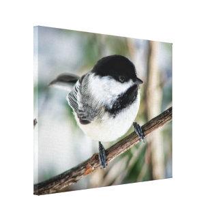 冬のかわいい《鳥》アメリカゴガラ キャンバスプリント