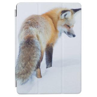 冬のアカギツネ iPad AIR カバー