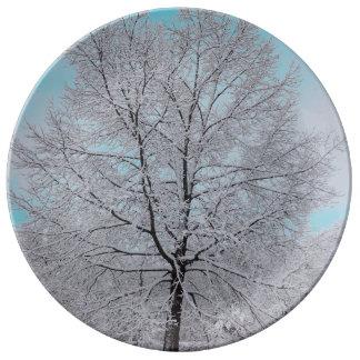 冬のカシの磁器皿 磁器プレート