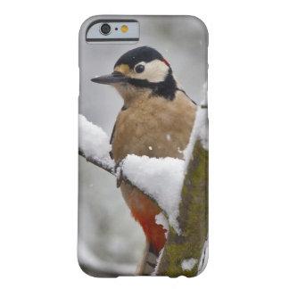 冬のキツツキのiPhone6ケース Barely There iPhone 6 ケース