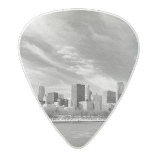 冬のシカゴのスカイラインの全景 アセタール ギターピック