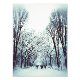 冬のセントラル・パークのモール フォトプリント