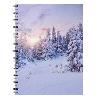 冬のマツ森林ノート ノートブック