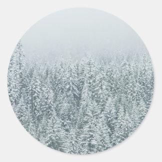 冬のマツ ラウンドシール