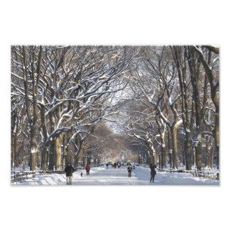 冬のモールセントラル・パーク フォトプリント