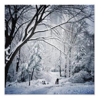 冬の不思議の国の犬の歩く フォトプリント