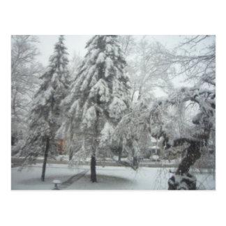 冬の不思議の国 ポストカード