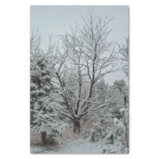 冬の不思議の国 薄葉紙