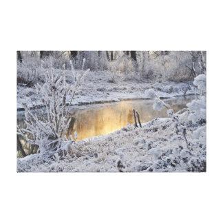 冬の入り江 キャンバスプリント