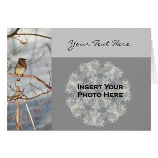 冬の写真カードのヒメレンジャクの鳥 カード