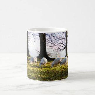 冬の太陽のヒツジ コーヒーマグカップ