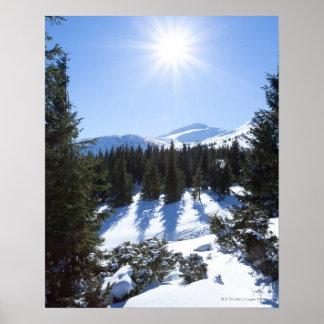 冬の太陽5 ポスター