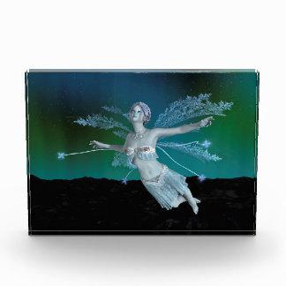 冬の妖精 表彰盾