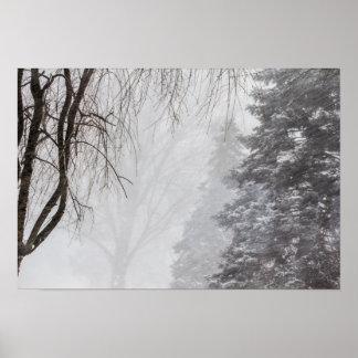 冬の嵐、オハイオ州 ポスター