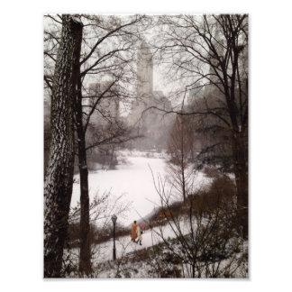 冬の日の池のまわりの歩行 フォトプリント