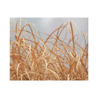 冬の日の高い草 キャンバスプリント