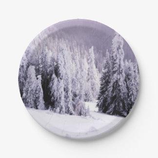 冬の景色 ペーパープレート