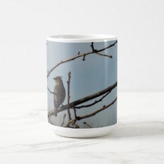 冬の木の大枝の小さい鳥 コーヒーマグカップ