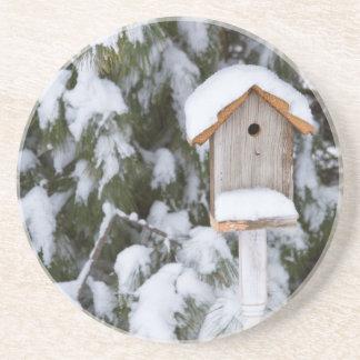 冬の松の木の近くの巣箱 コースター