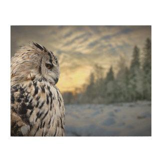 冬の森林背景のフクロウのポートレート ウッドウォールアート