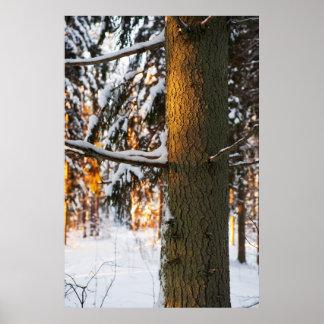 冬の森林 ポスター
