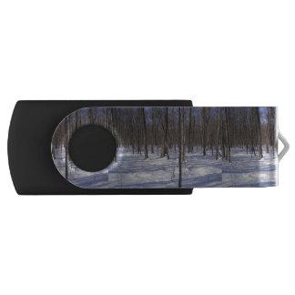 冬の森林 USBフラッシュドライブ