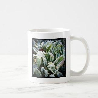 冬の植物 コーヒーマグカップ