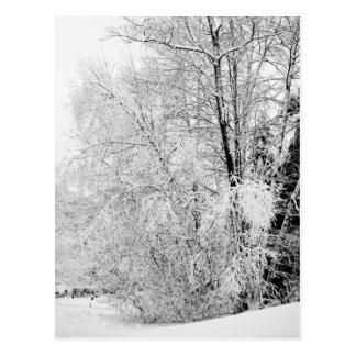 冬の白の郵便はがき ポストカード