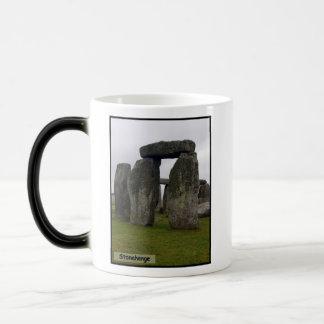 冬の石 モーフィングマグカップ