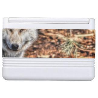 冬の端の野性生物の写真の白いオオカミ クールボックス