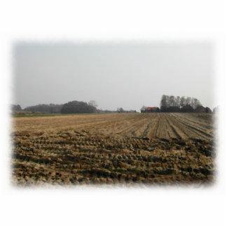 冬の耕された分野。 景色 写真彫刻オーナメント