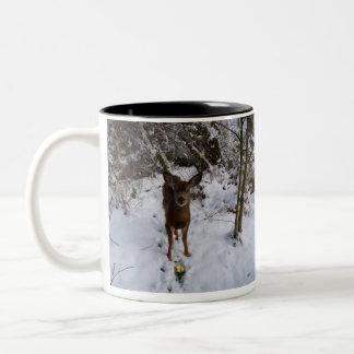 冬の若いシカ ツートーンマグカップ