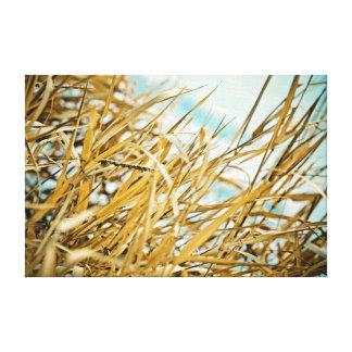 冬の草 キャンバスプリント