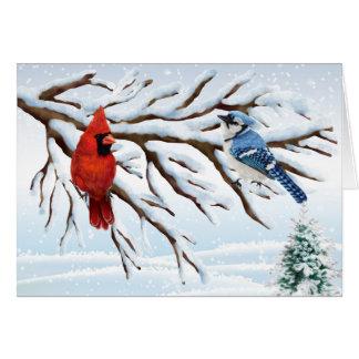 冬の赤い(鳥)ショウジョウコウカンチョウおよびアオカケスのメッセージカード カード