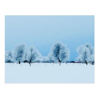 冬の農場 ポストカード