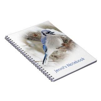 冬の雪のアオカケス ノートブック