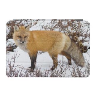 冬の雪のアカギツネ iPad MINIカバー