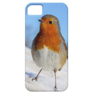 冬の雪のヨーロッパのロビンとの場合に電話をかけて下さい iPhone 5 CASE