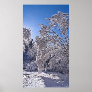 冬の雪の秋ポスターの重み ポスター
