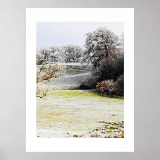 冬の霜の降りたな分野そして木 ポスター