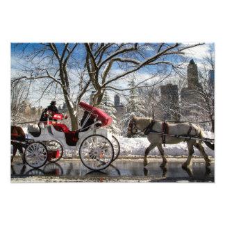 冬の馬車馬 フォトプリント