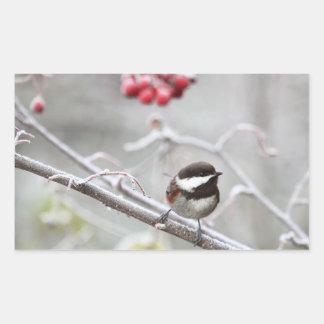 冬の《鳥》アメリカゴガラそして赤い果実 長方形シール