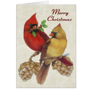冬の(鳥)ショウジョウコウカンチョウ カード
